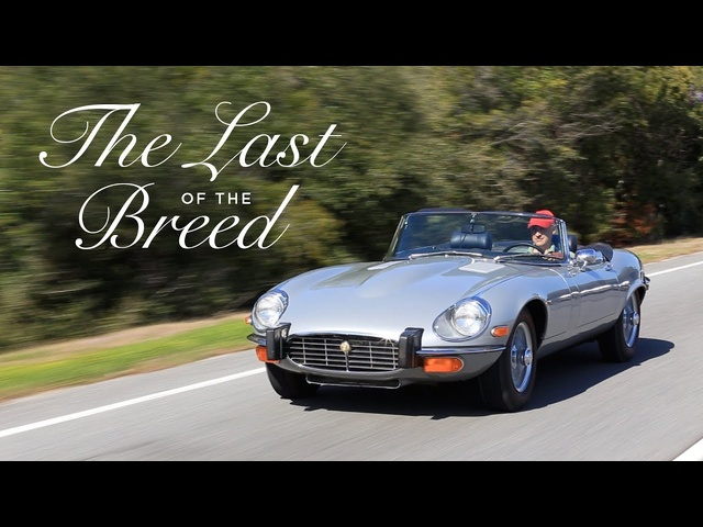 Jaguar E-Type - The Last of the Breed - Petrolicious