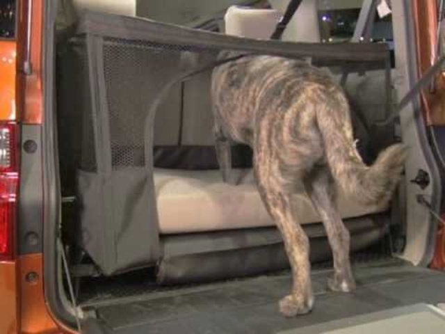 2010 Honda Element Dog Friendly - Drive Time preview