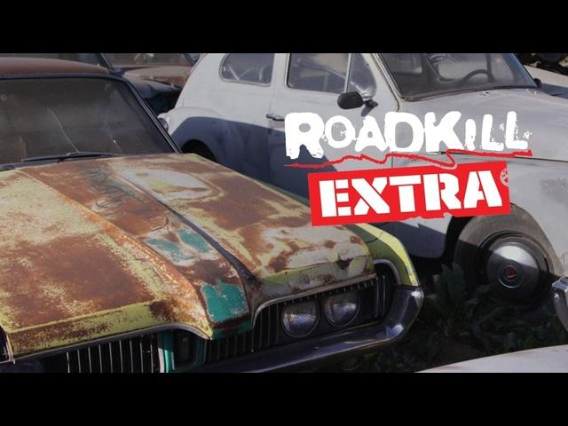 Freiburger Junkyard Pick: 6.5L Cougar! -Roadkill Extra