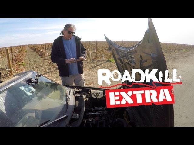 Dulcich Joyride: His Triumph TR7 -Roadkill Extra