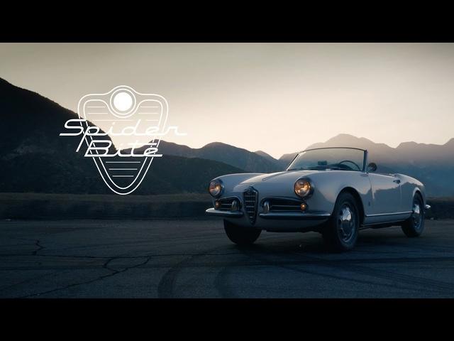 1956 Alfa Romeo Giulietta Spider: Spider Bite